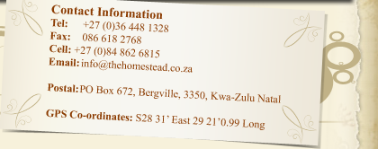 The Homestead :: Contact Information